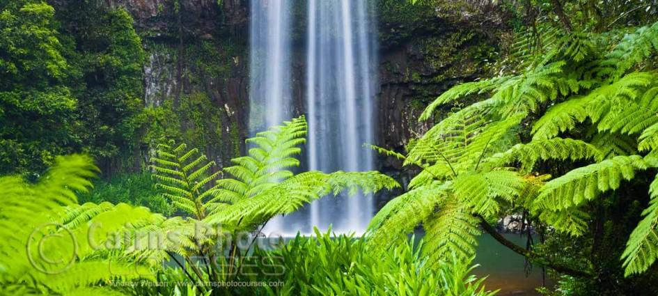 CPC0005-Cairns-Photo-Tour