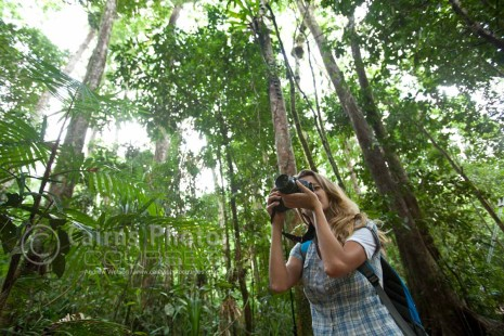 Woman taking a photo in rainforest, Mossman Gorge, North Queensland, Australia