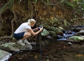 Image of photographer in rainforest creek, Cairns, North Queensland, Australia