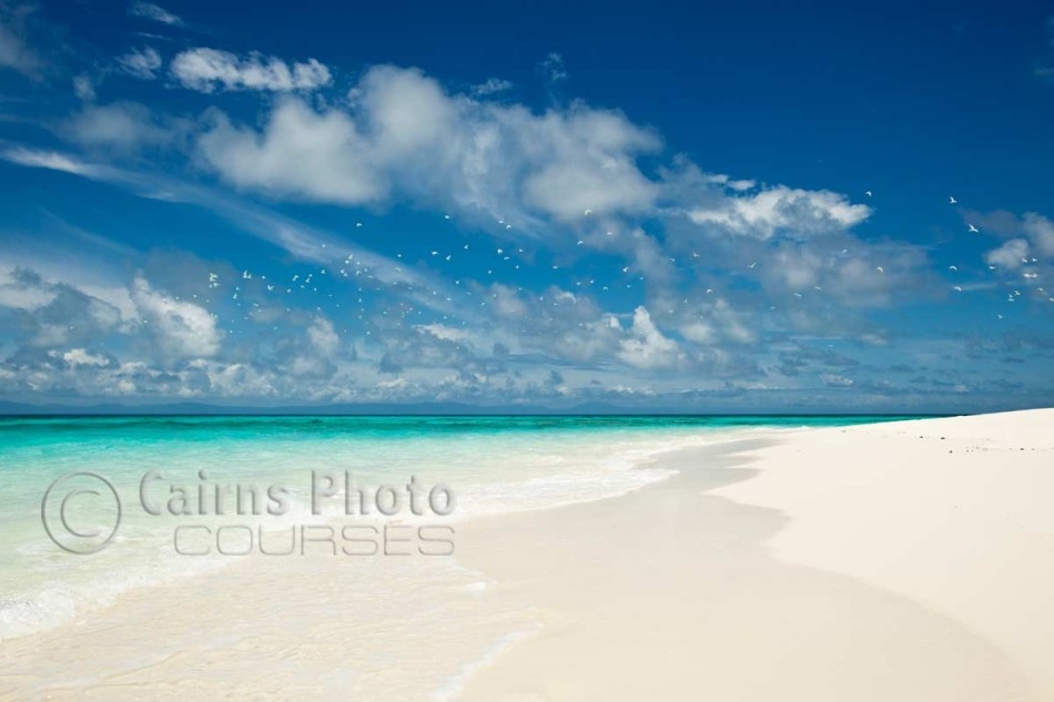Image of white sand and clear waters of Vlassof Cay, Great Barrier Reef, Cairns, North Queensland, Australia