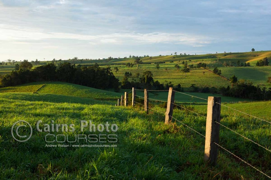 Image of rolling pastures at dawn on the Atherton Tablelands, North Queensland, Australia