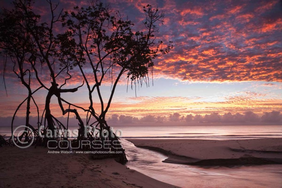 Image of Kewarra Beach at dawn, Cairns, North Queensland, Australia