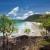 Image of pandanus palms overlooking Noah Beach, Daintree National Park, North Queensland, Australia