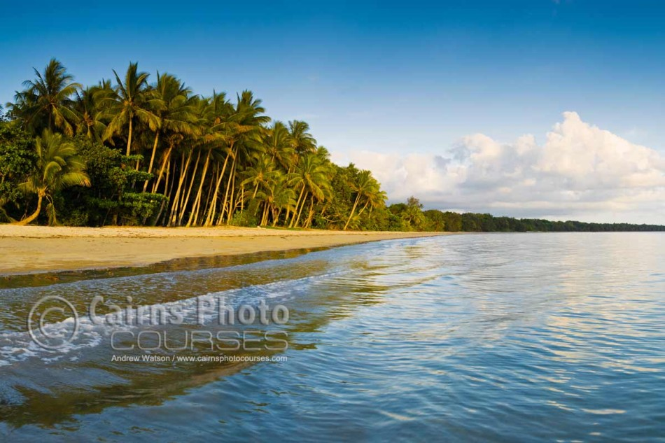 Image of Four Mile Beach at dawn, Port Douglas, North Queensland, Australia