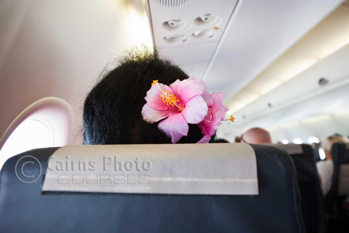 Torres Strait Islander Flower