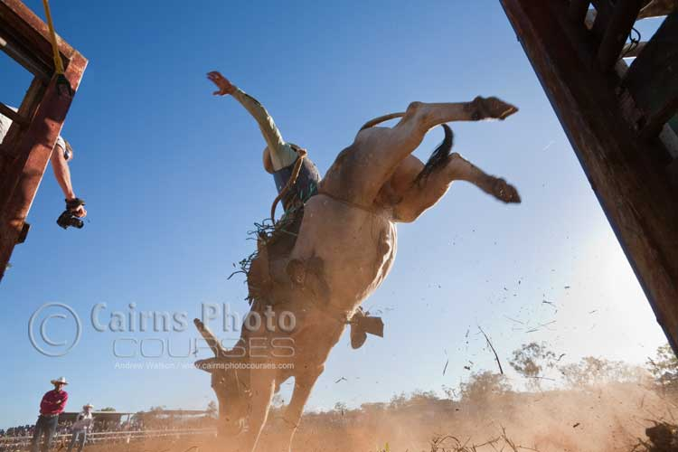 Low angle shot of bull rider in action.  Canon 16-35mm lens @ 20mm, f8 @ 1/500 sec, ISO 400