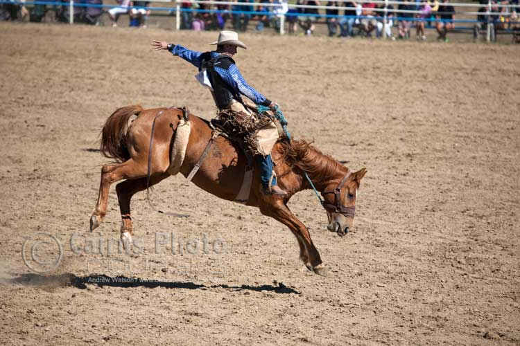 Saddle Bronc Rider.  Canon 100-400mm lens @ 300mm, f5.6@ 1/3200 sec, ISO 400
