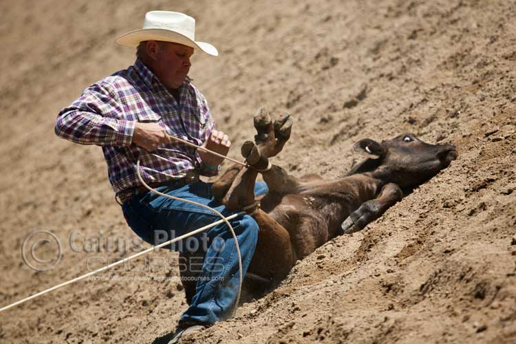 Calf roping.  Canon 100-400mm lens @ 360mm, f7.1 @ 1/800 sec, ISO 250