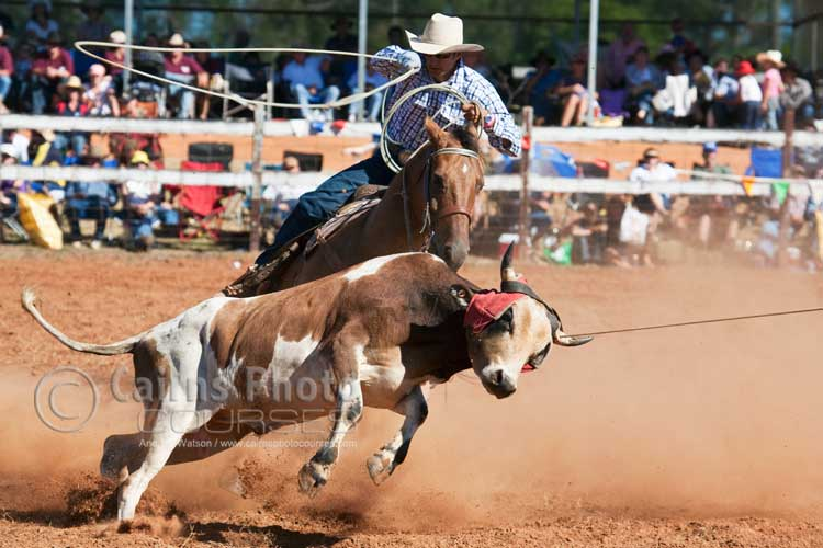 Team roping event.  Canon 100-400mm lens @ 235mm, f8 @ 1/800 sec, ISO 400