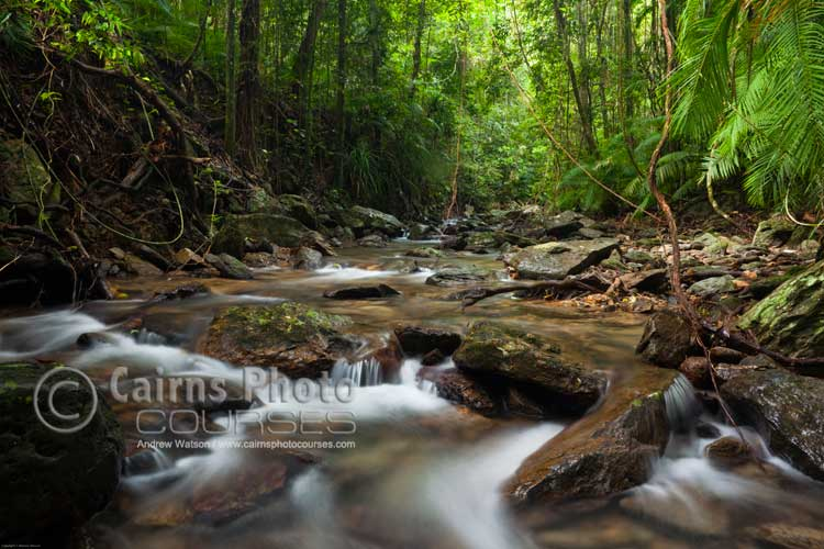 Small aperture and polarising filter in shooting a rainforest creek.  Canon 5D MkII, Tripod, 24mm, ISO 200, f16 @ 3.2 sec